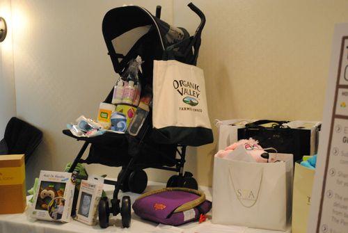 Travel in Style BabyCargo stroller