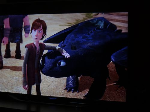 Dragons Riders of Berk Hiccup and Toothless