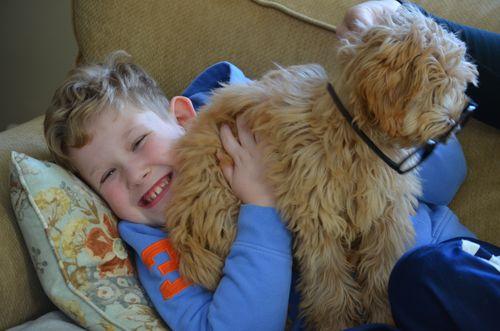 Mr Peabody and Sherman glasses on dog smiley